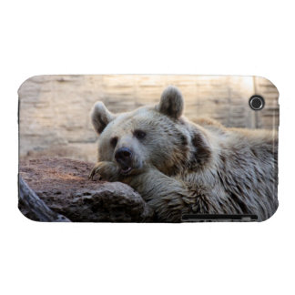 Daydreaming Bear iPhone 3 Case-Mate Cases