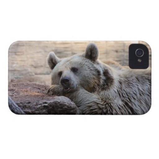 Daydreaming Bear iPhone 4 Case