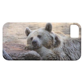 Daydreaming Bear iPhone SE/5/5s Case