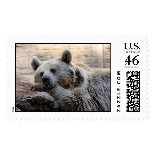 Daydreaming Bear Postage Stamps