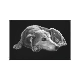 Daydreaming Dog Illustration Canvas Print