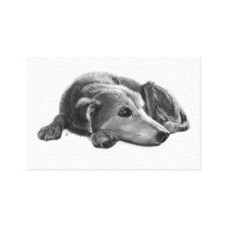 Daydreaming Dog Illustraton Canvas Print