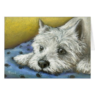 Daydreaming westie greeting cards