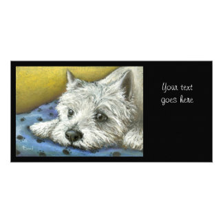 Daydreaming Westie Photo Cards