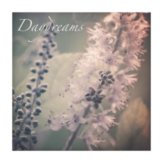 Daydreams Mountain Holly Canvas Print