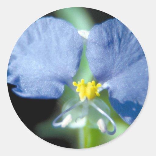 Dayflower Pegatina Redonda
