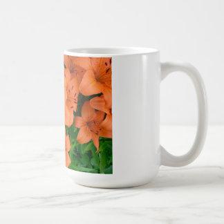 Daylilies anaranjados tazas