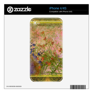 Daylilies and Stone Path iPhone 4 Skin