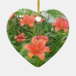 daylilies hermosos ornamentos de reyes magos
