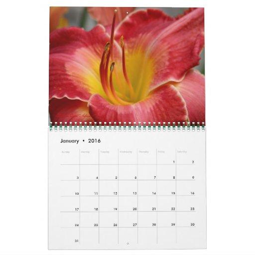 Daylilies of R.W.Munson Calendar