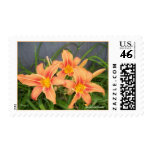 DAYLILIES ON BLUE POSTAGE STAMP