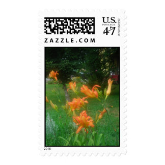Daylilies: Orange -stamp Stamp