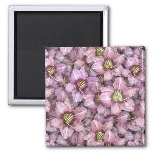 Daylilies por todas partes imán cuadrado