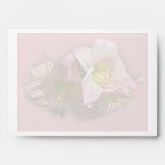 Daylilies rosados de lujo sobre