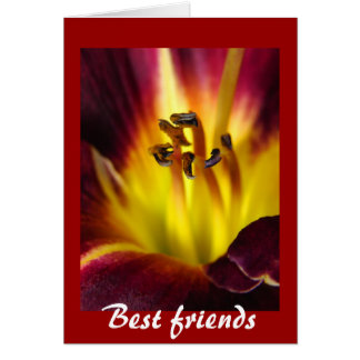 Daylily-Abstract- Best friends, greeting card