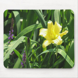Daylily and Salvia Mouse Pad