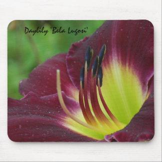 Daylily 'Bela Lugosi' Mouse Pad