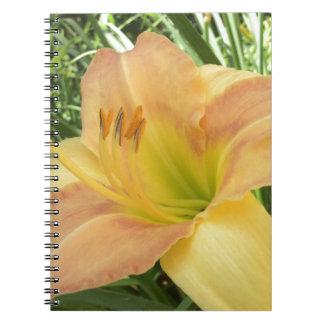 """DAYLILY """"Blond Baby"""" --- Notebook"""
