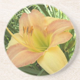 "DAYLILY ""Blond Baby"" --- Yellow green orange. Drink Coaster"