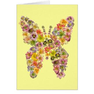 Daylily Butterfly Note Cards