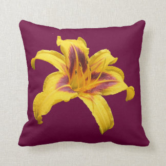 Daylily excepcional cojines