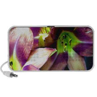 Daylily Grouping Portable Speaker