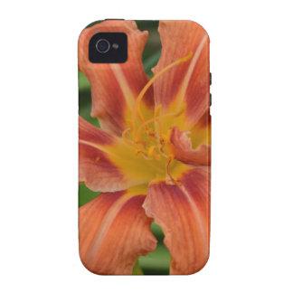 Daylily hermoso Case-Mate iPhone 4 fundas