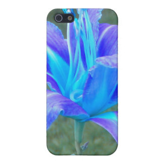 Daylily: Purple N Blue iPhone 4 case