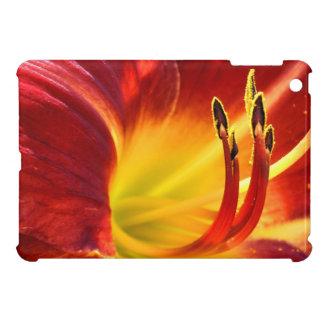 Daylily rojo