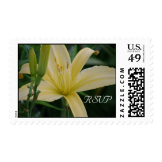 Daylily RSVP Stamp