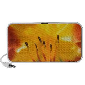 Daylily Mini Speakers