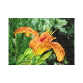 Daylily Watercolor Canvas