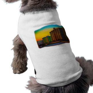 Daytona Beach apuntala arte enmarcado de los centr Playera Sin Mangas Para Perro