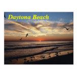daytona, beach, magnet, magnets, fridge, kitchen,