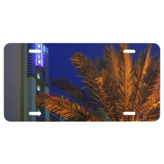 Daytona Palm License Plate