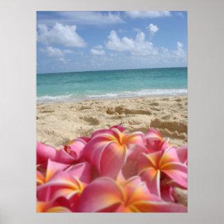 Dayz hawaiano posters