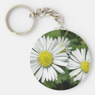 """Dayzed"" Collection Basic Round Button Keychain"