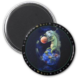 Daze of the Iguana Magnet