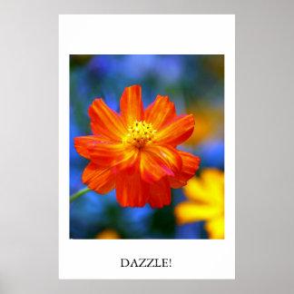 Dazzle! Poster
