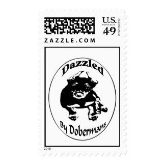 Dazzled by Dobermans Postage Stamps