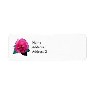 Dazzler rosado oscuro de la camelia etiqueta de remite