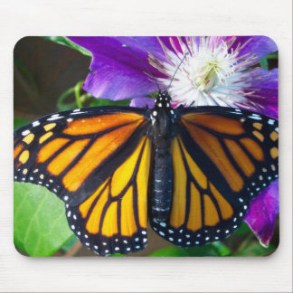 Dazzling Butterfly Mouse Pad