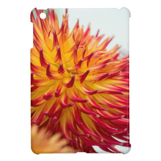 dazzling Dahlia gift asortment iPad Mini Cover