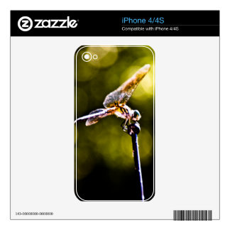 Dazzling Dragonfly Skin For iPhone 4S