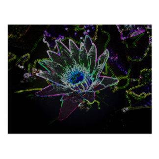 Dazzling Glow Lotus Postcard