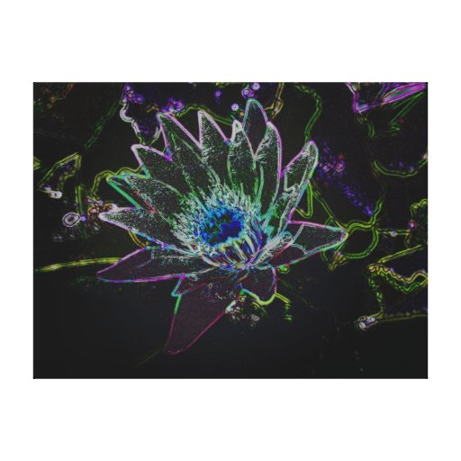 Dazzling Glow Lotus Stretched Canvas Prints