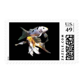 Dazzling Koi Pair Postage Stamps