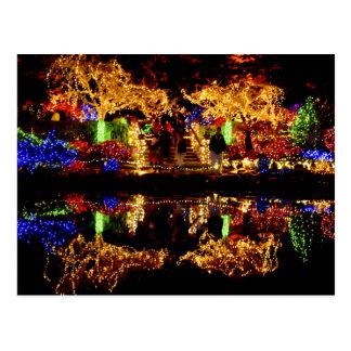 Dazzling Lights - Shore Acres State Park Oregon Postcard
