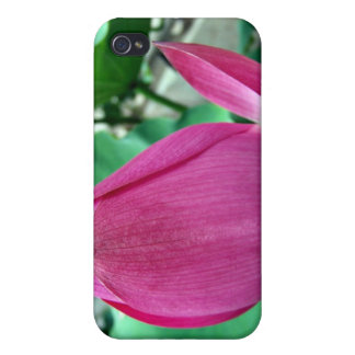 Dazzling Pink Lotus Flower iPhone 4 Covers