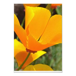 Dazzling Poppy R.S.V.P. 3.5x5 Paper Invitation Card